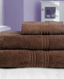Spaces Chestnut Swift Dry Towels 1021469